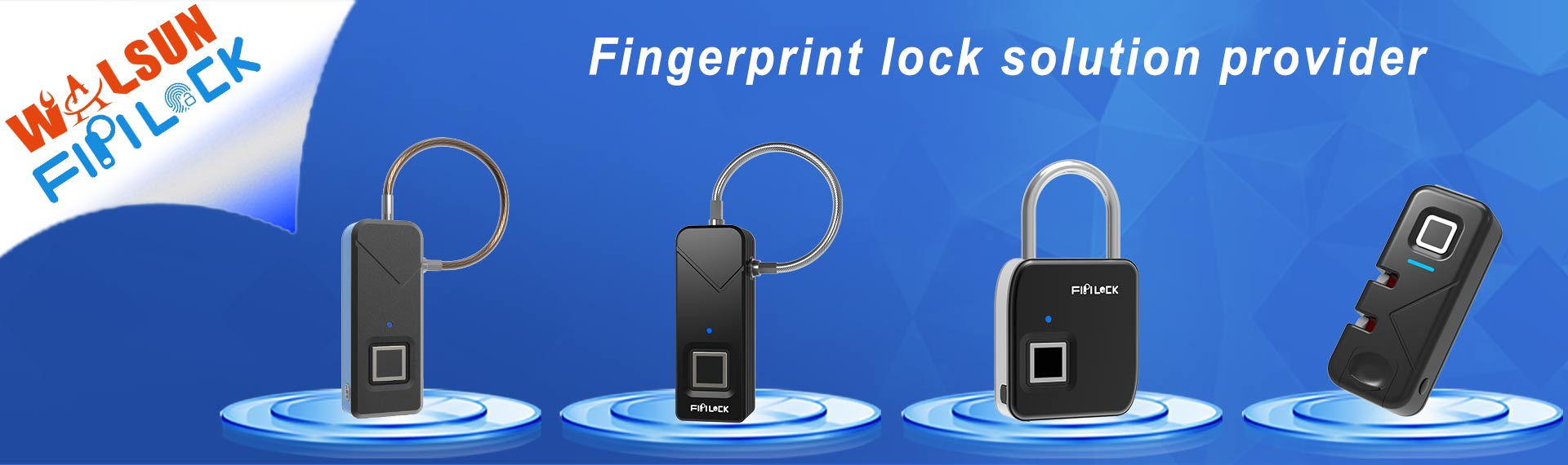 fingerprint lock provider